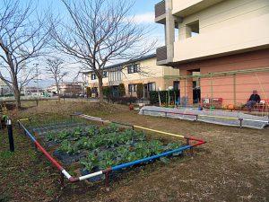 シェ・モアの菜園