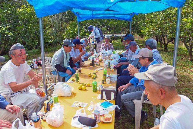 ミカン収穫後の昼食