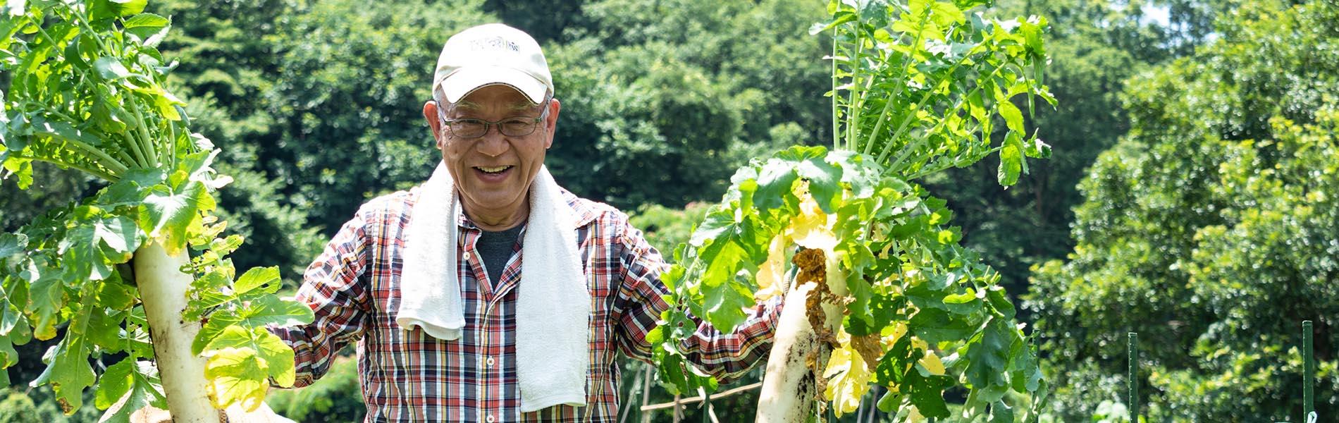 農園、収穫、ダイコン、笑顔の男性